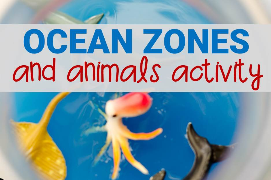 Ocean Zones and Animals Activity