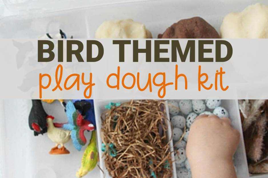 Bird Play Dough Kit