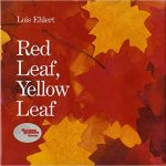 Red leaf,yellow leaf