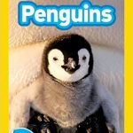 This penguin book for kids is appropriate for young students due to the quality of its engaging images and length.