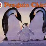 Penguin Chick tells the story of how emperor penguin chicks survive in the arctic.
