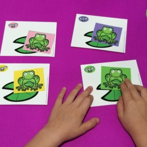 Hungry Frogs Color Matching Game