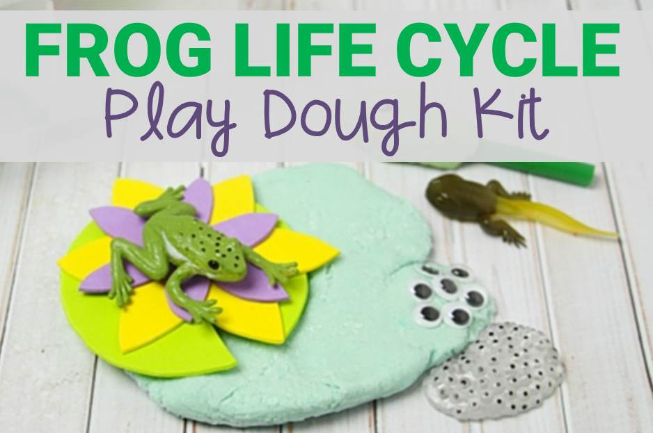 Frog Play Dough Kit