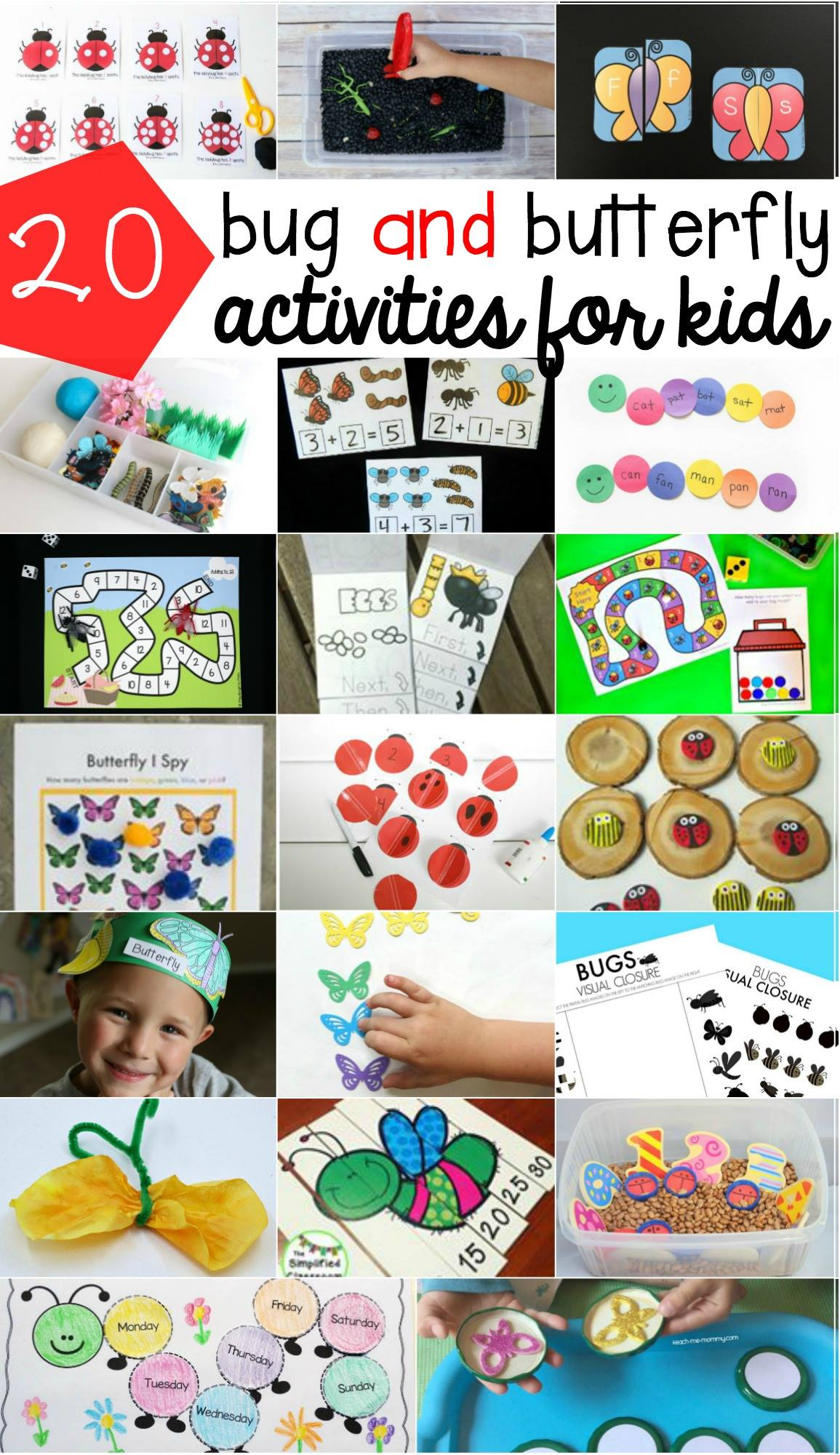 20 bug and butterfly activities for kids