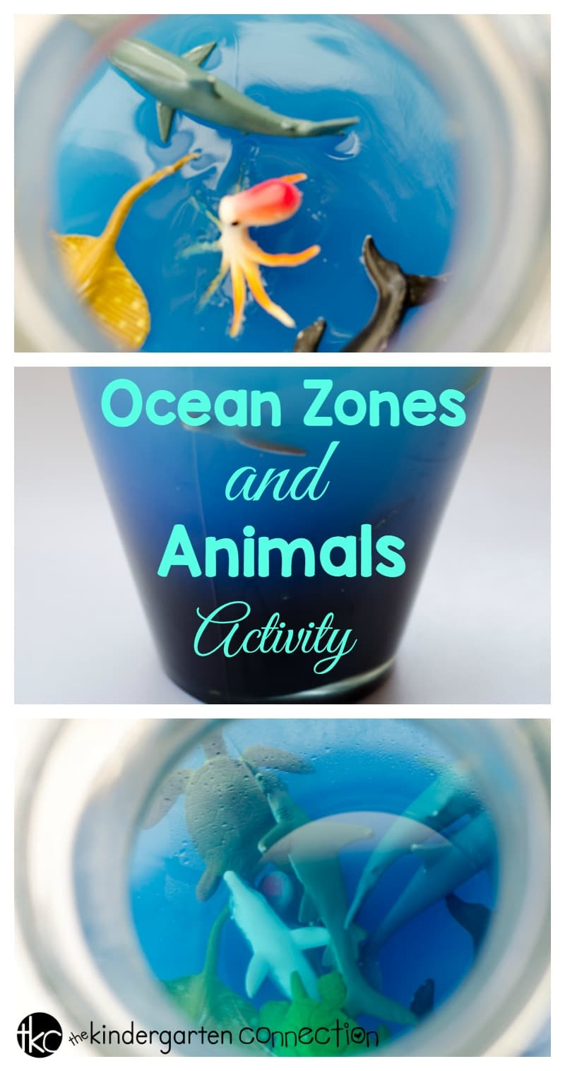 Ocean Zones and Animals Activity by The Kindergarten Connection
