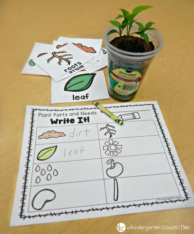 Make planting with kids fun and hands on, while learning about plant parts and needs with this fun and free writing center!