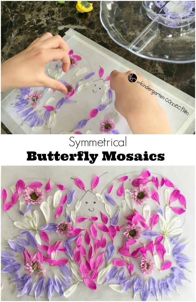 Explore symmetry by making a beautiful symmetrical butterfly mosaic. Perfect for a butterfly unit of study or just for fun!