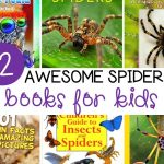 12 Spider Books for Kids