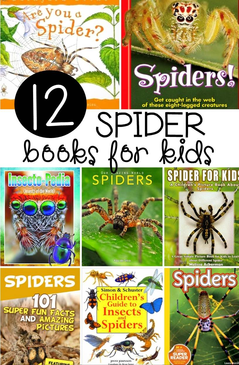 If you are learning about spiders in the classroom or home, you will definitely want to read these 12 awesome spider books for kids!