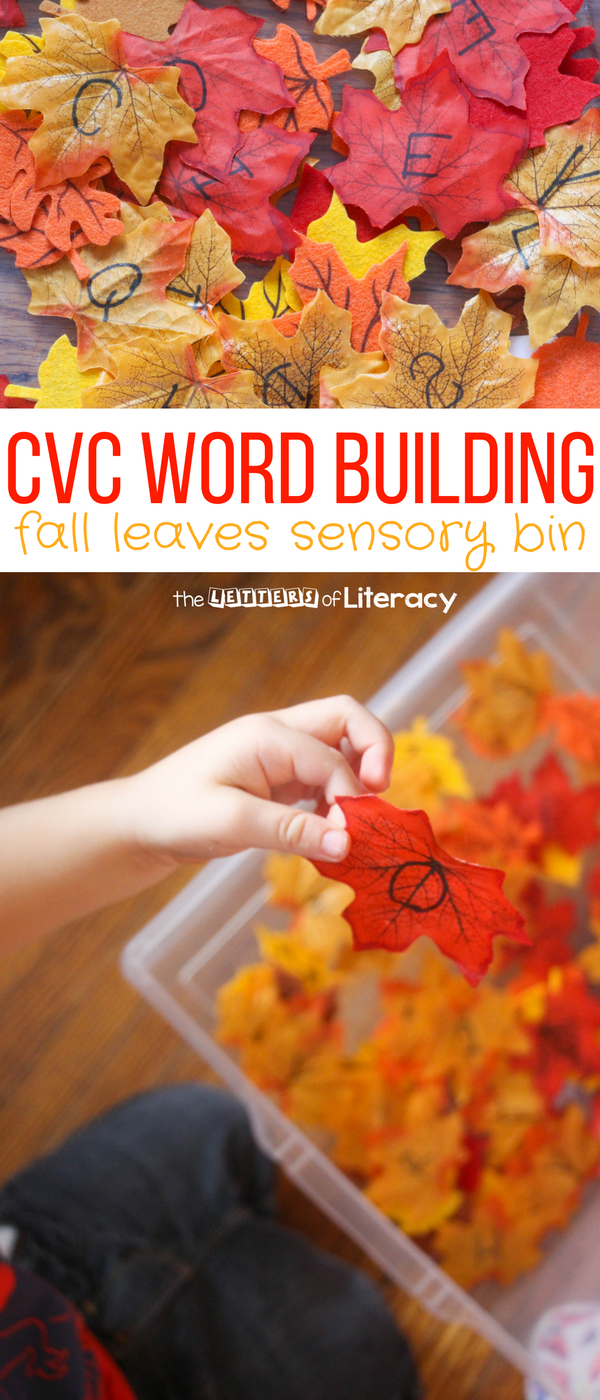 CVC Word Building Fall Sensory Bin and FREE printable for Pre-K and Kindergarten!