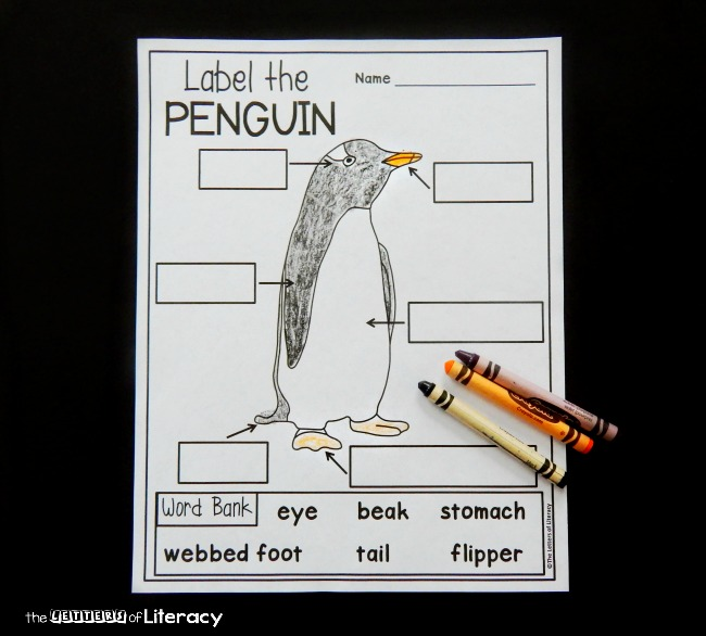 Learning about penguins? This penguin labeling free printable is a great activity to add to your penguin unit or collection of penguin activities for kids!