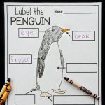 Penguin Labeling Printable