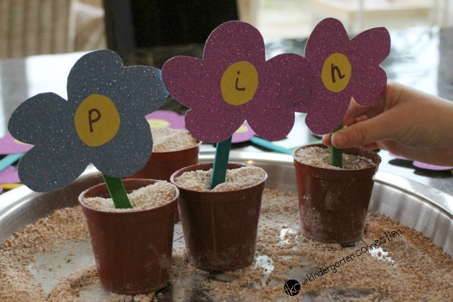 Sounding out each of the letters and blending them together to make new words is challenging for young children. Create this invitation to plant CVC words!
