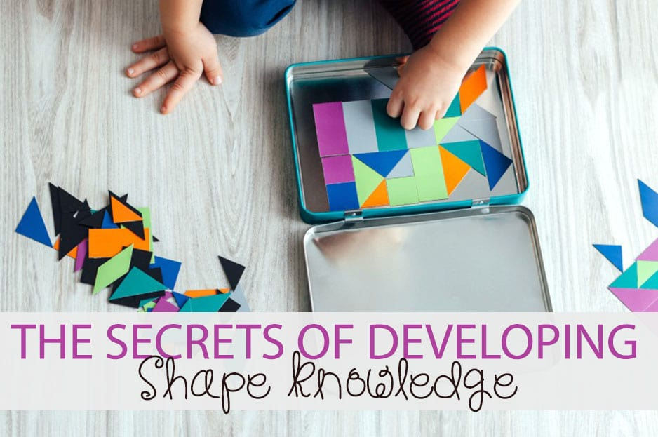 The Secrets of Developing Shape Knowledge