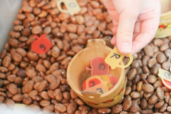 Ready for fall, this Apple Matching Letter Sensory Bin is great for bringing a fresh autumn approach to identifying upper- and lower-case letters.