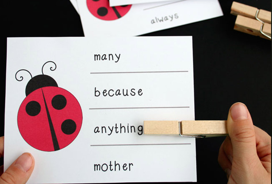 Ladybug Syllable Counting Clip Cards