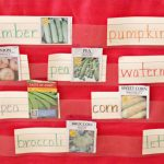 Planting Seeds Spring Writing Activity