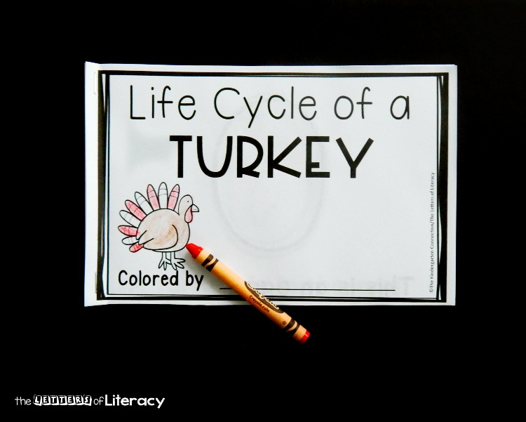 Looking for a turkey-themed Thanksgiving activity for kids? This life cycle of a turkey  emergent reader is great for learning sight words and turkey facts!