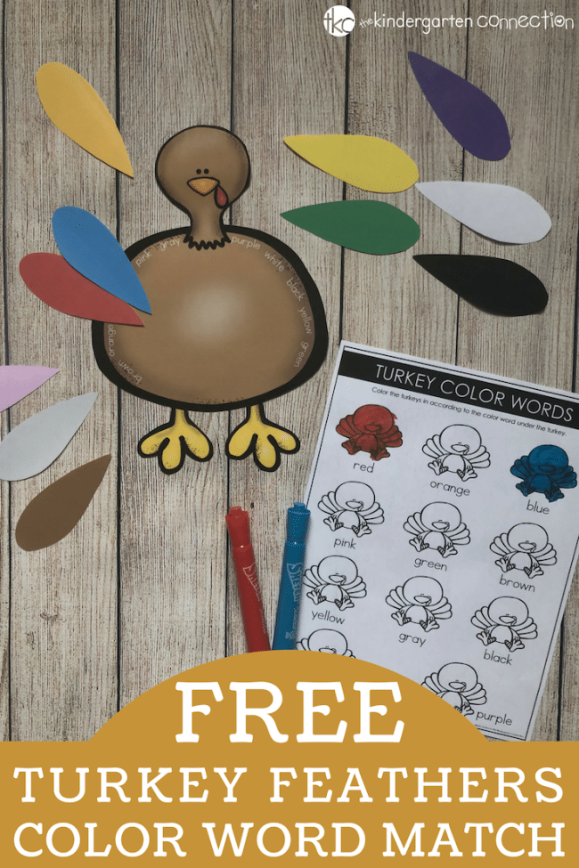 FREE printable Thanksgiving Color Word Activity mathing game for kindergarten!
