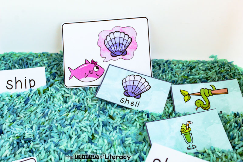 Get our FREE Printable Digraph Activity for a fun Shark Family SH Hunt! This literacy center is perfect for Kindergarten and for use with an ocean theme!