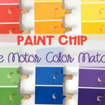 Paint Chip Color Matching Activity