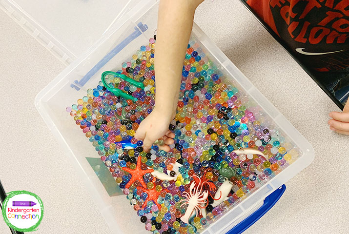 Sensory bins are more fun and more effective with less students at each center.