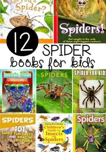 12 Spider Books for Kids
