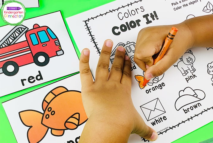 The children will find the color cards around the room and color the matching picture on the recording sheet.