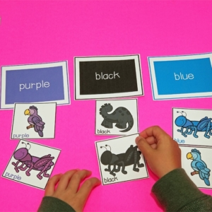 Printable Color Sorting Activity