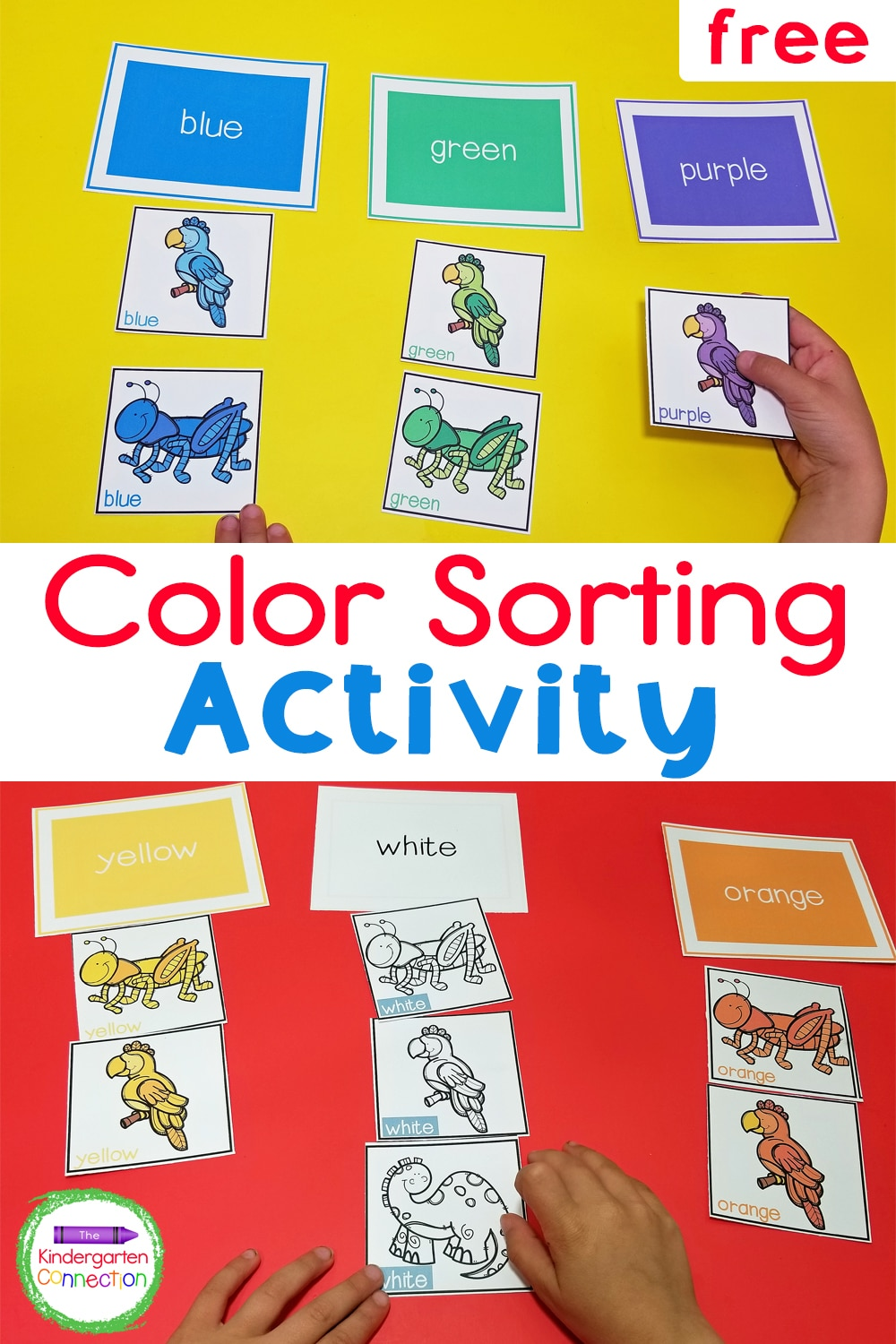 This free Printable Color Sorting Activity for Pre-K & Kindergarten is great for practicing color recognition and learning color words, too!