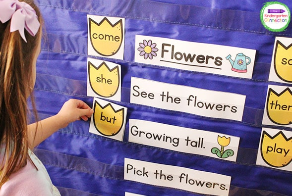 This pocket chart activities bundle includes this fun spring-themed sight word chant.