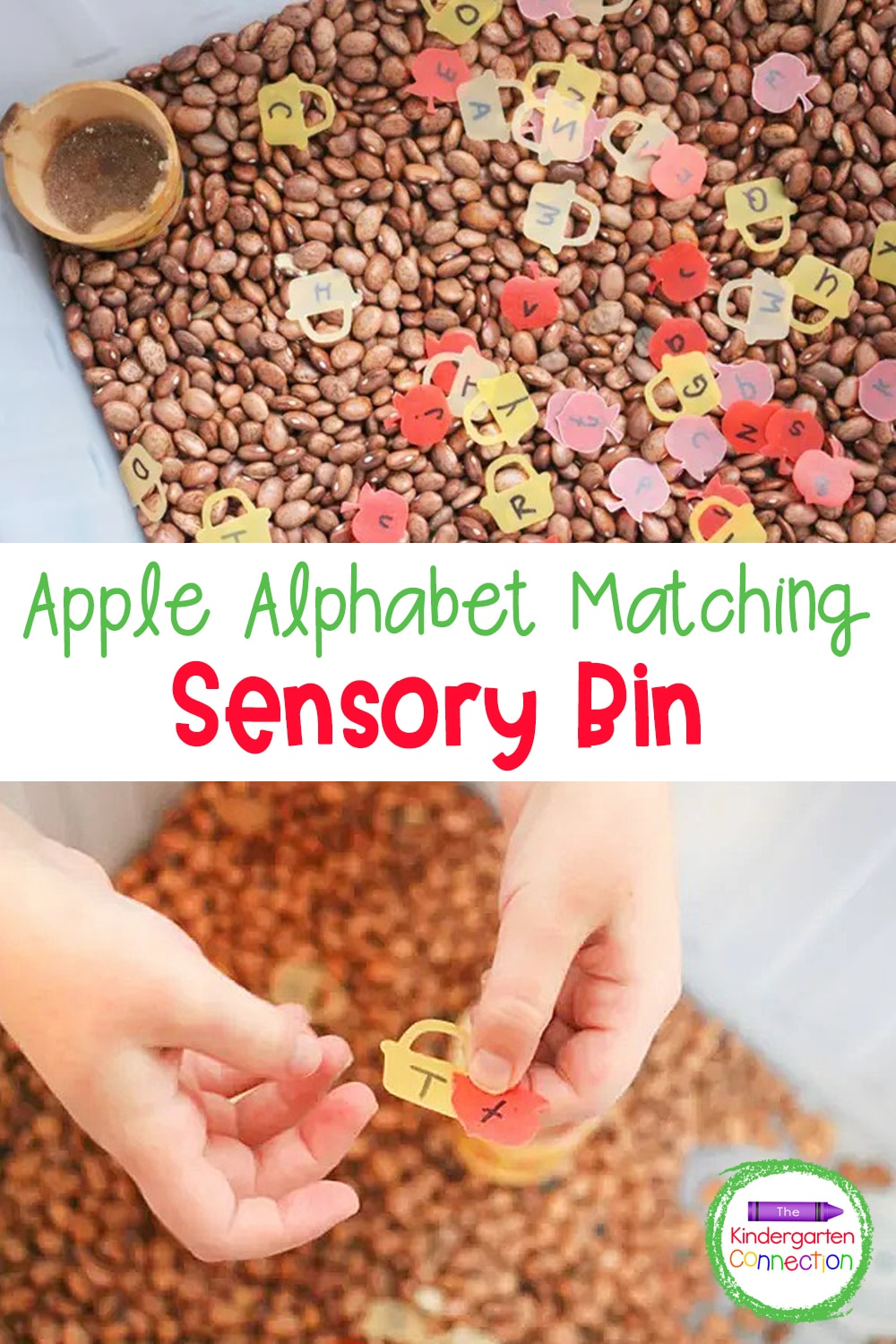 This free Apple Alphabet Sensory Bin is great for bringing some hands-on fall fun to identifying uppercase and lowercase letters!