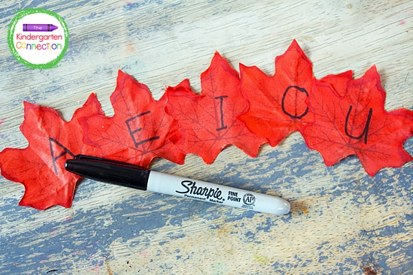 I used a black permanent marker to write vowels on the red leaves and consonants on the orange leaves.