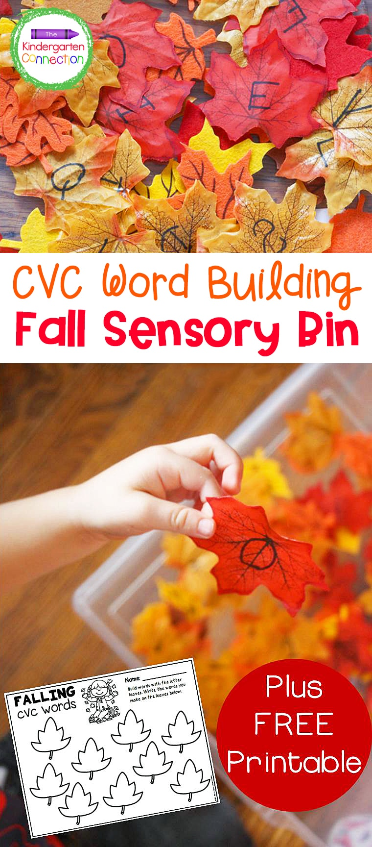 This free CVC Word Building Fall Leaves Sensory Bin is a fun way to get kids excited about forming CVC words and is a great fall activity!
