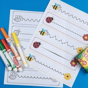 Bees and Bugs Pre-Writing Practice