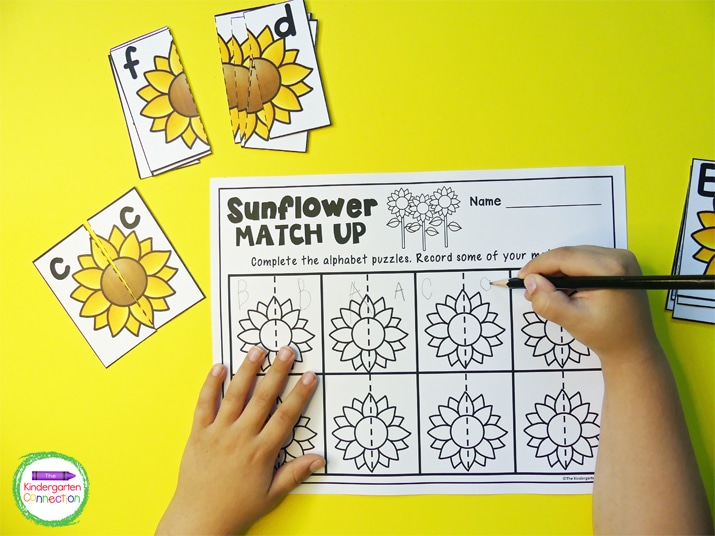 This Sunflower Match Up activity comes with an optional recording sheet.